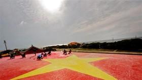 Female artist creates largest ceramic mosaic flag of Vietnam