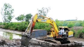Heavy salt intrusion threatens rice crop in Mekong Delta
