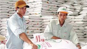 Sugar Association calls for flexible export policy