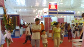 Vietnamese High Quality Products Fair opens in City