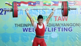 Vietnamese athletes win more medals at SEA Games