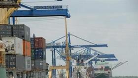Cat Lai Port unloads first batch of Lunar New Year