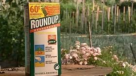 Thuốc diệt cỏ của Monsanto liên quan đến những bệnh chết người