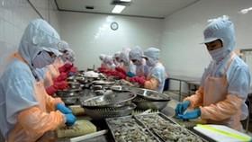 Cambodian market lures Vietnamese investors