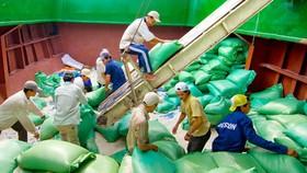 Agency warns Vietnamese enterprises against deferred payments