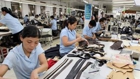 US carries great potential for Vietnam exporters: official