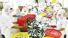 Seafood trade surplus exceeds US$5 billion