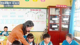 VNEN applied in primary school nationwide