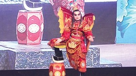 Tuong actors mix it up for Tet