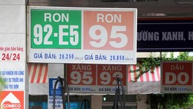 HCMC steps up bio gasoline sales