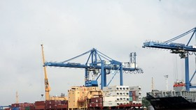 Firms predict export orders will increase