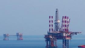 PetroVietnam falls short of profit goals