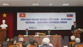 HCM City promotes links with Slovak locality