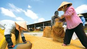 Companies urged to focus on food quality