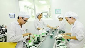 HCMC to remove low-tech firms from industrial zones
