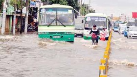 HCMC needs regional urban visions to tackle flooding