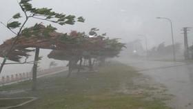Đại hội thể thao bãi biển châu Á 2016: Chậm tiến độ vì bão số 3