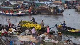 Can Tho to fix up floating market