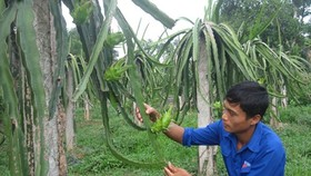 Man finds success in farming after failures