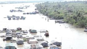 Dams slash Mekong fish stocks