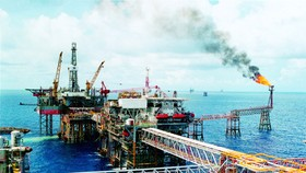 PVN faces crude oil plunge