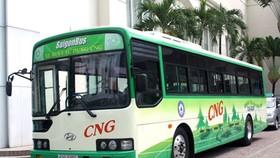 Experts suggest Gov't to finance enviro-friendly bus fleets
