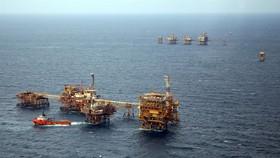 PM applauds PetroVietnam's contributions