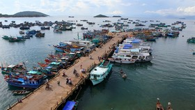 Gov't funds aid Kiên Giang's marine economy