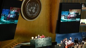 Italy, Netherlands offer to share UN council seat