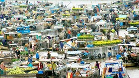 Can Tho organizes Cai Rang floating market tourism day