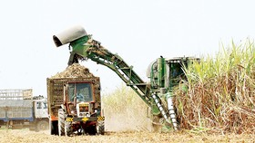 Sugar industry should brace for integration impacts: seminar