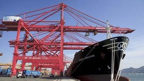 S. Korea's exports rise for first time in 20 months