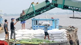 Philippines to import 239,100 tons of rice from Vietnam & Thailand