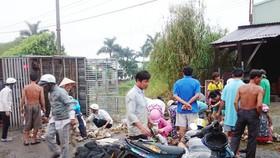 Locals help buy dead ducks in overturned truck in Long An Province