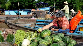 Viet Nam announces plan to boost Mekong tourism
