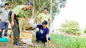 Báo động nạn săn bắt động vật hoang dã ở rừng U Minh