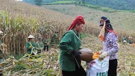 PM lauds agro achievements