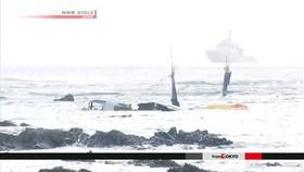 Mỹ ngưng hoạt động máy bay Osprey tại Nhật Bản sau tai nạn