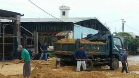 Phú Yên: Sóng lớn đưa cát lấp cảng cá