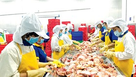 VN exports chicken breasts to Japan for first time