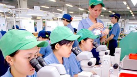 Vietnamese agencies to inspect, remedy problems mentioned by Japanese firms