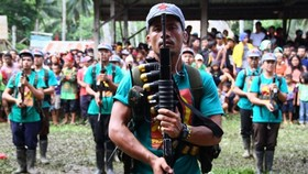 Philippines,rebels agree on interim ceasefire