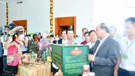 Vietnamese PM pays attention to traditional medicines