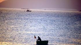 """Tiều phu"" cửa biển"