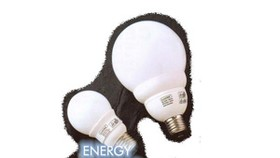 Labeling Energy Saving Products