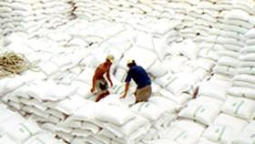 Exports Reach $31.5 Billion in Eight Months