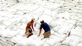 Viet Nam Inks Deals to Export 700,000 Tons of Rice in January
