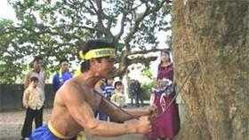 Ha Tay Province Establishes New Vietnamese Martial Arts School
