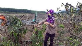 Vụ mỏ đá gây ảnh hưởng vườn cà phê: huyện mời Công ty Quang Đức đến làm việc