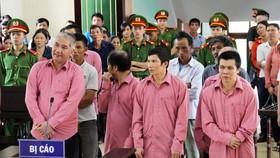 Phá rừng quy mô lớn, 9 bị cáo bị phạt 81 năm tù, buộc bồi thường 4,7 tỷ đồng